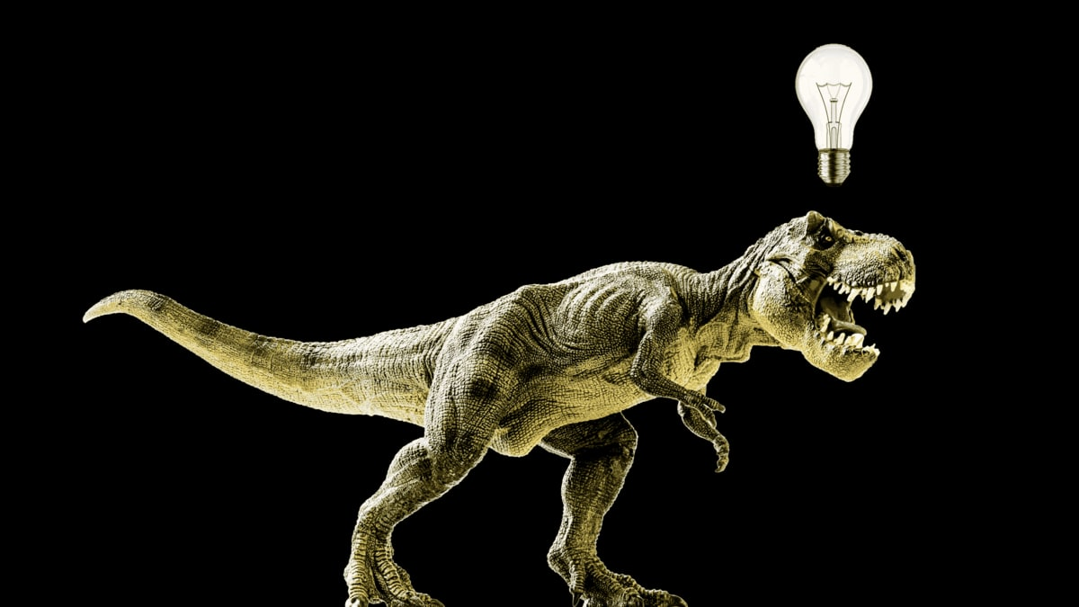 New Research Shows That T Rex Was As Smart As A Chimp