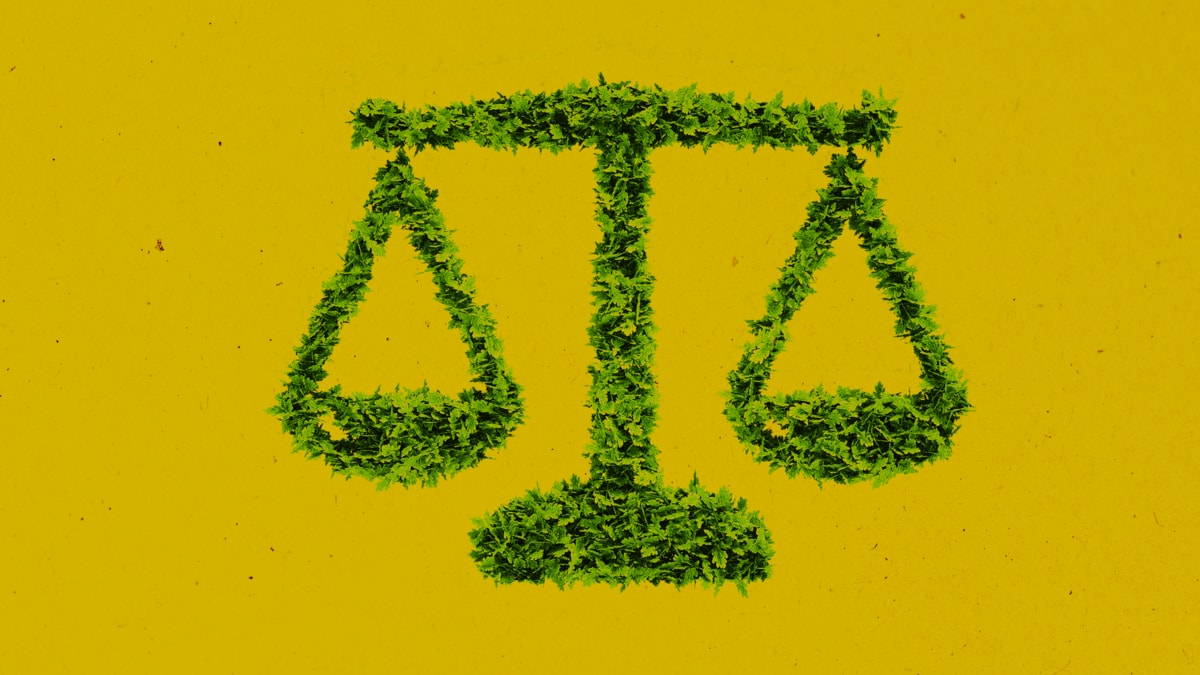 Should Nature Have Legal Rights?