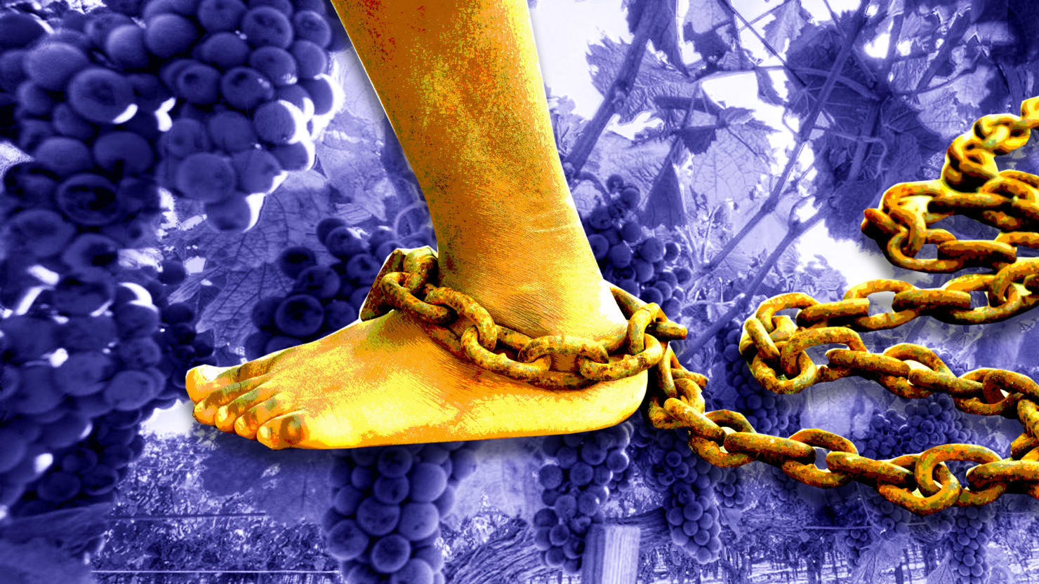 California's Wine Industry was Built on Slave Labor