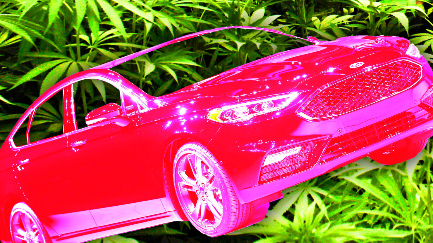 Mexican Drug Smugglers High on Ford