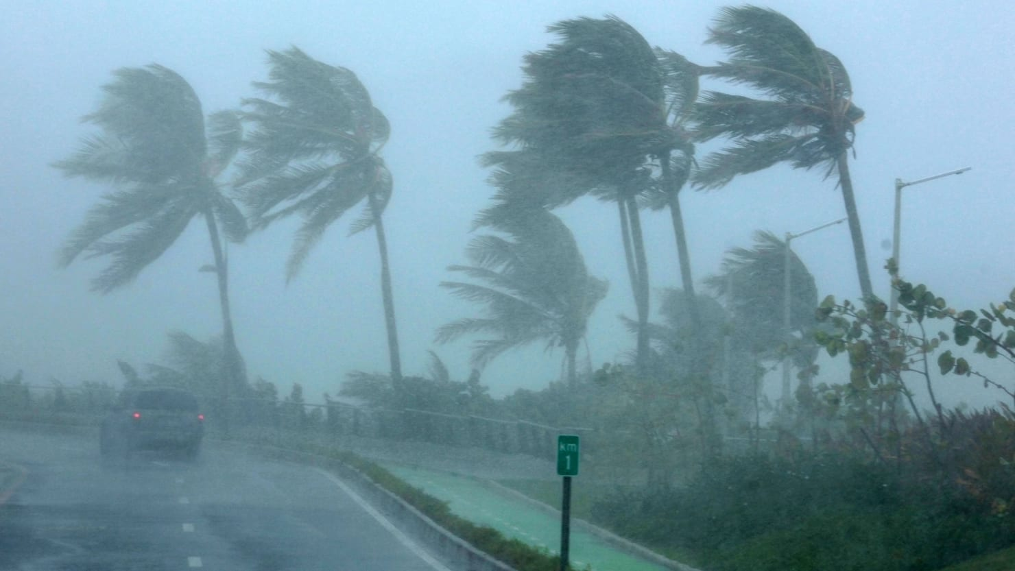 Palm trees bend in the wind as Hurricane Irma slammed across islands in the northern Caribbean on Wednesday, in San Juan, Puerto Rico September 6, 2017.