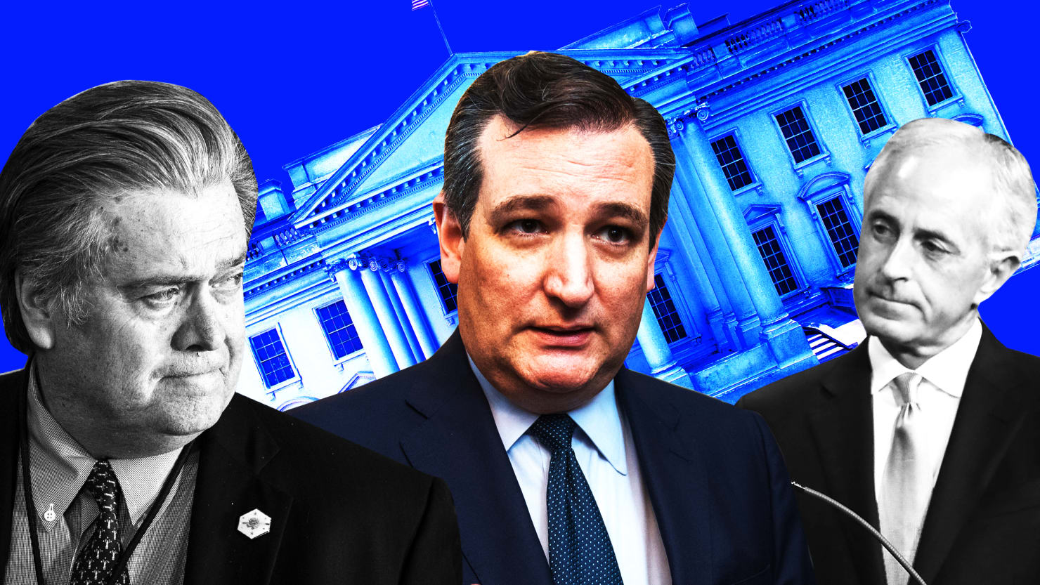 Bannon to Senate GOP: I'm Gonna Mow You All Down, Save Ted Cruz