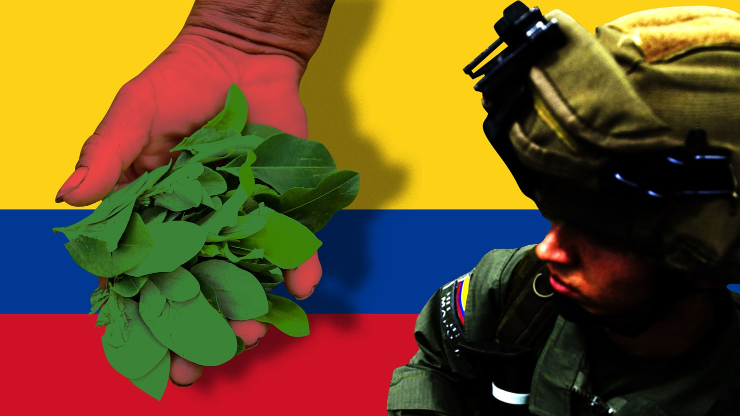 Colombian Security Forces 'Massacre' Coca Farmers Under Pressure From Trump