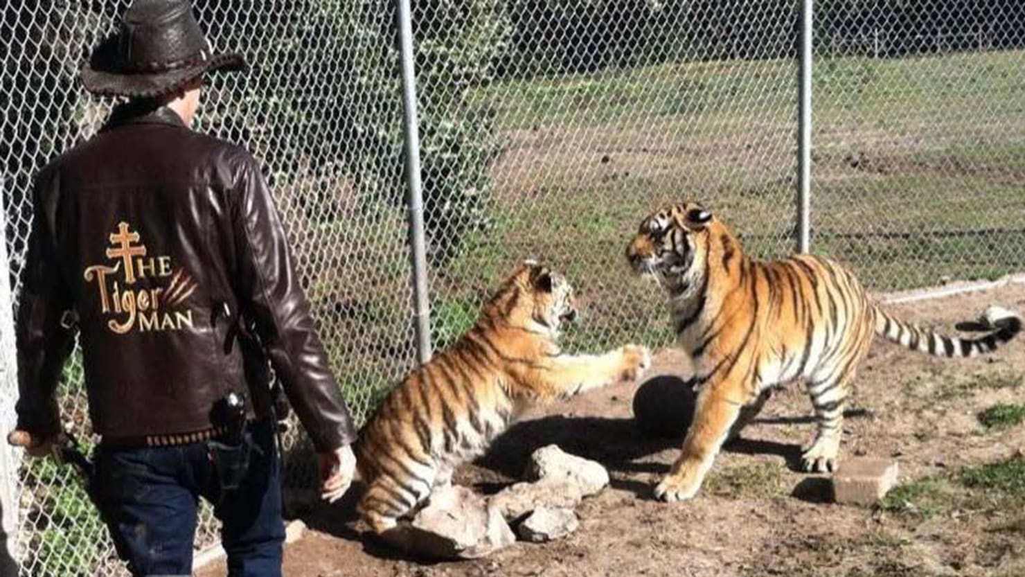gun toting zoo owners in showdown with peta and the feds over baby