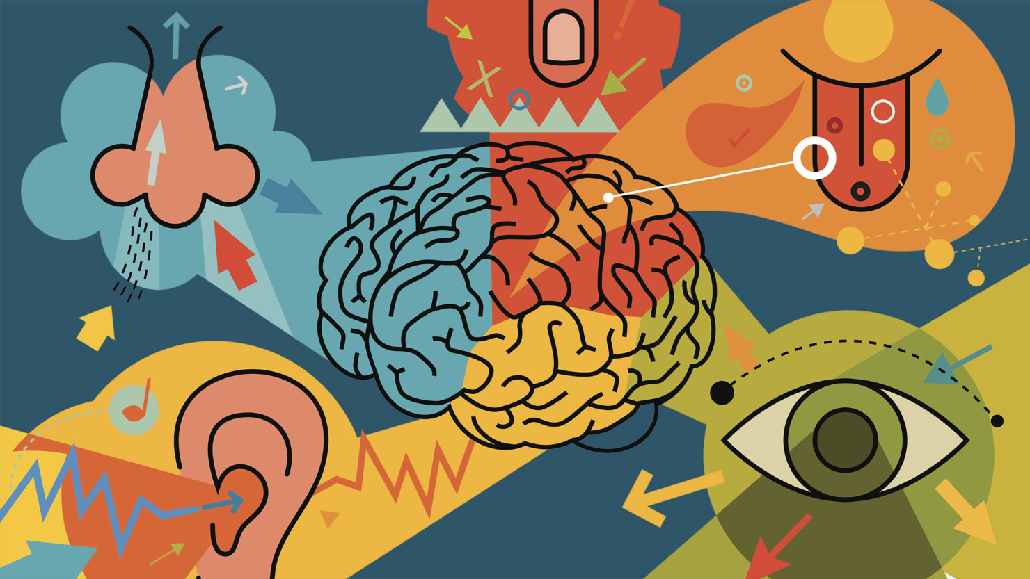 how technology will screw up our senses