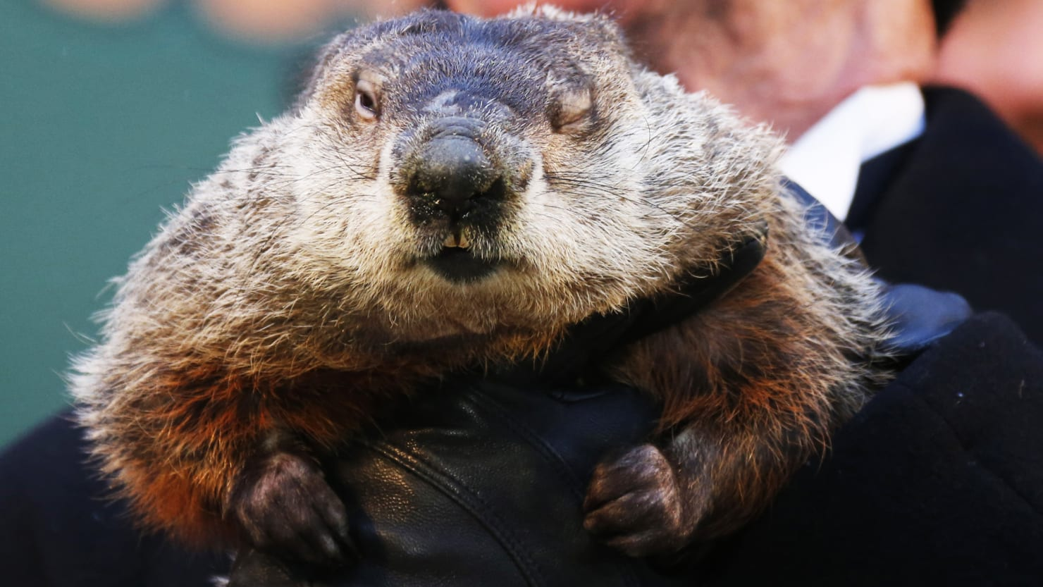 how climate change has ruined groundhog day