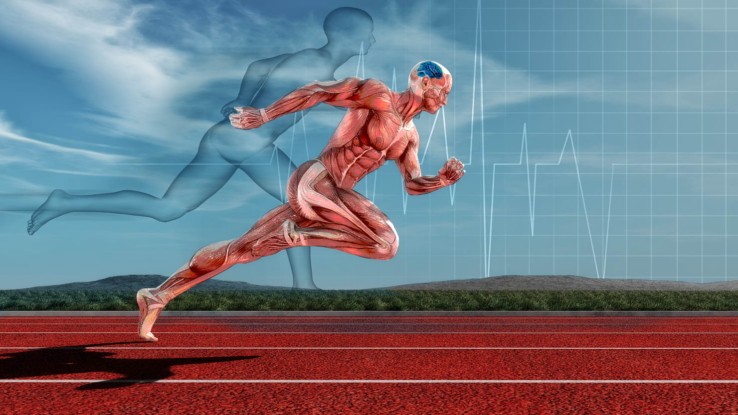 The Limits of Human Endurance Are Embedded In the Brain