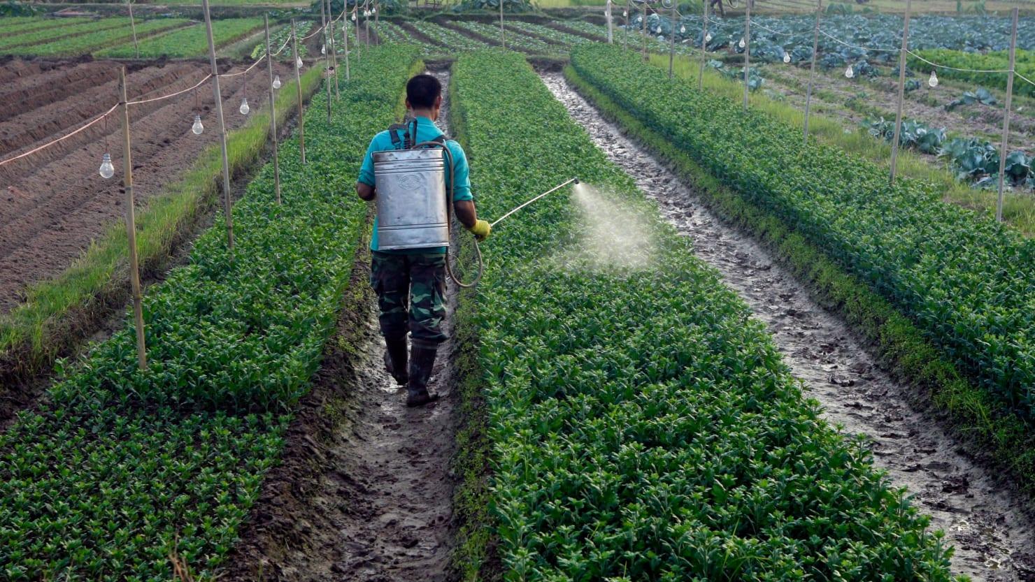 FDA finds weedkiller in food