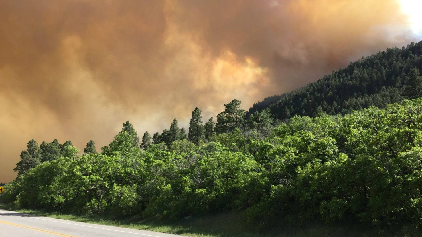 COlorado and New Mexico wildfires