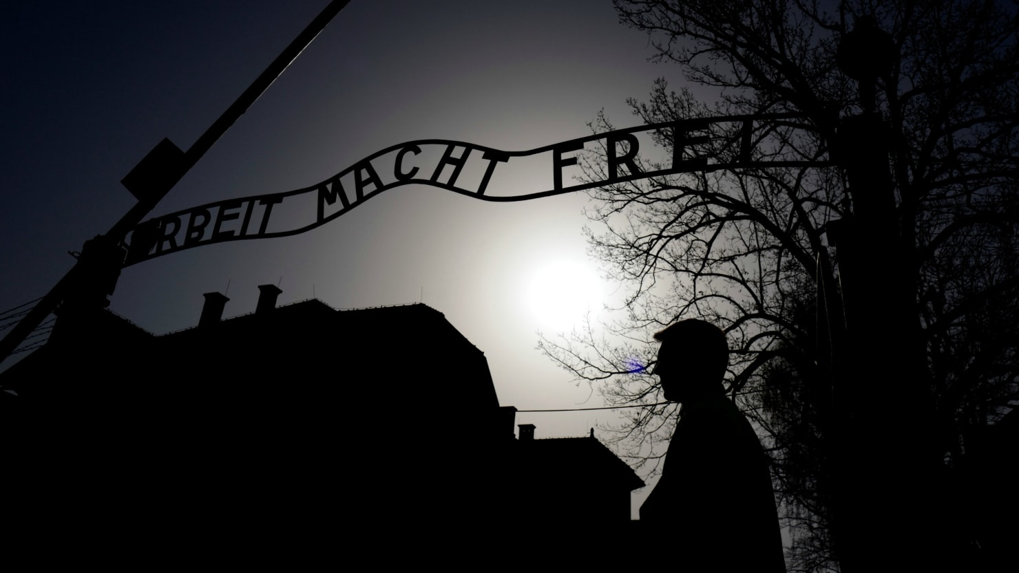 Polish Government U-Turns On Controversial Holocaust Law - The Daily ...