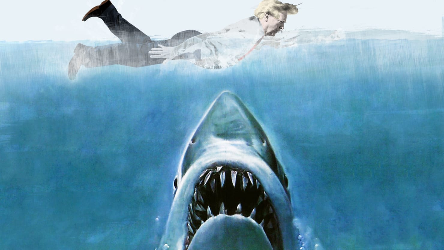 inside donald trump s deathly fear of sharks i hope all the sharks