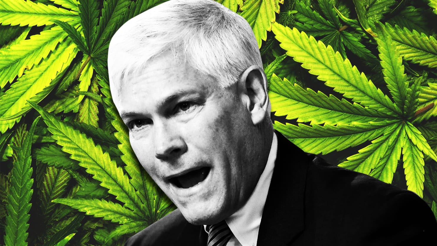 pete sessions colin allred medical marijuana november midterm election cannabis pot zartler mark christy cara autism autistic dcfs child protective services self injury