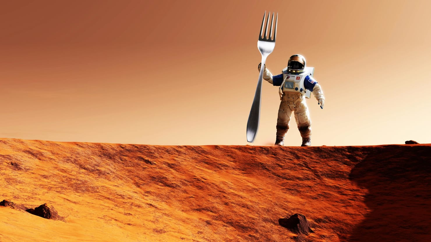 illustration of astronaut holding a fork as a pitchfork on mars red planet michelle perchonok the martian cooking boiling shelf life delivery nasa international space station living on mars