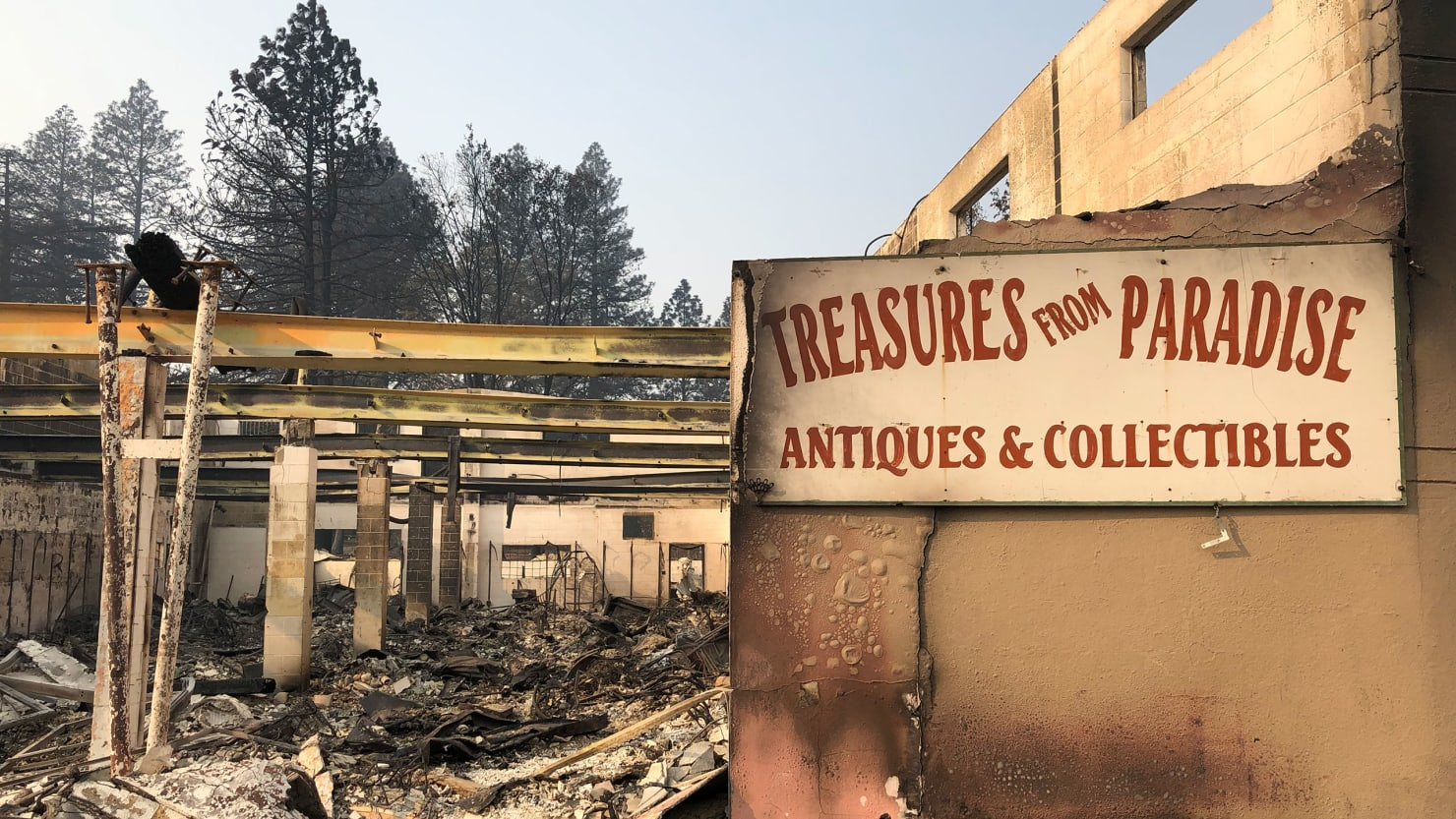California Fire Death Toll Climbs in Paradise, Where Residents Were Burned Alive in Cars