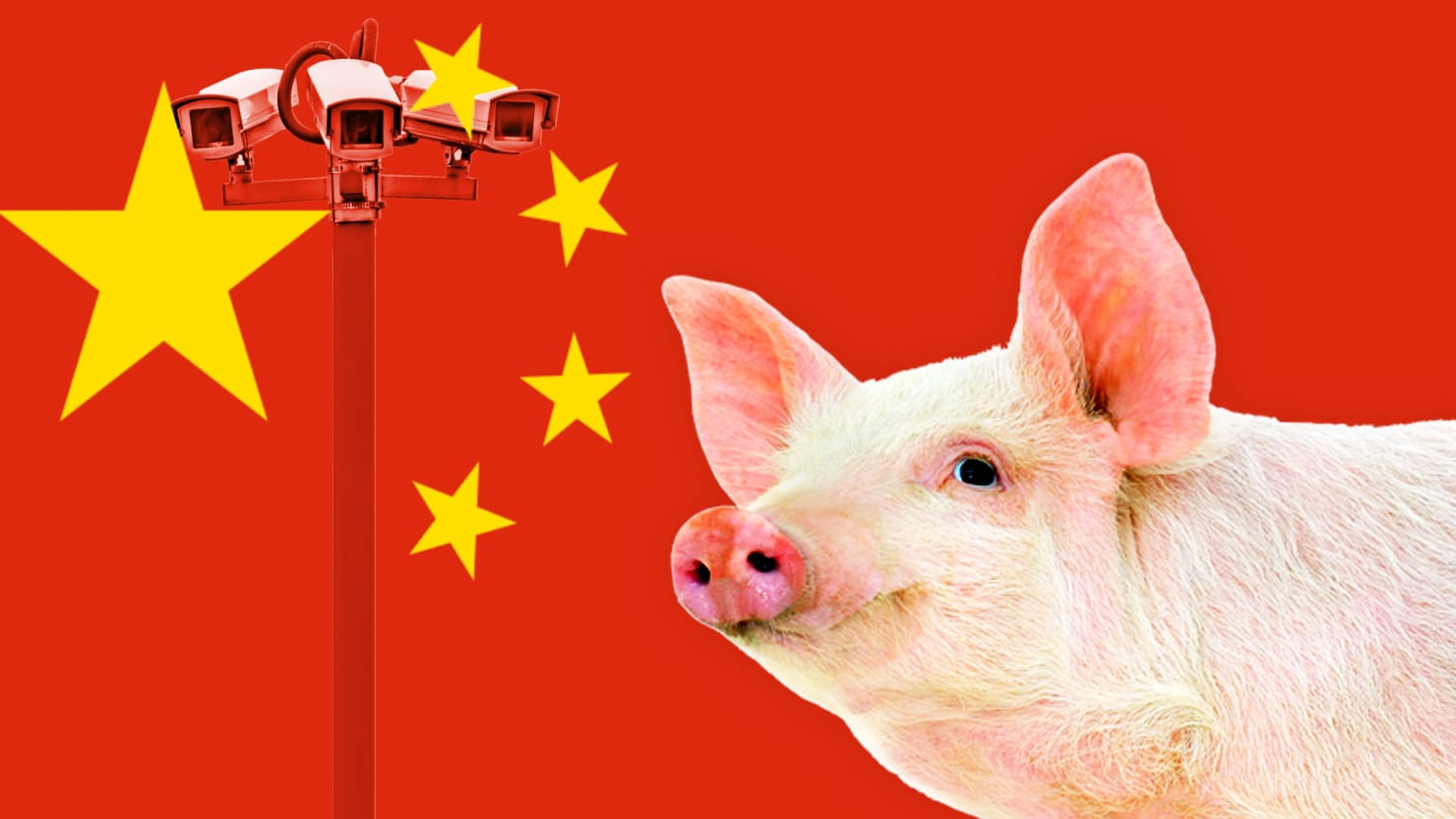 A Chinese Saga of Swine, Surveillance, and Sanctions