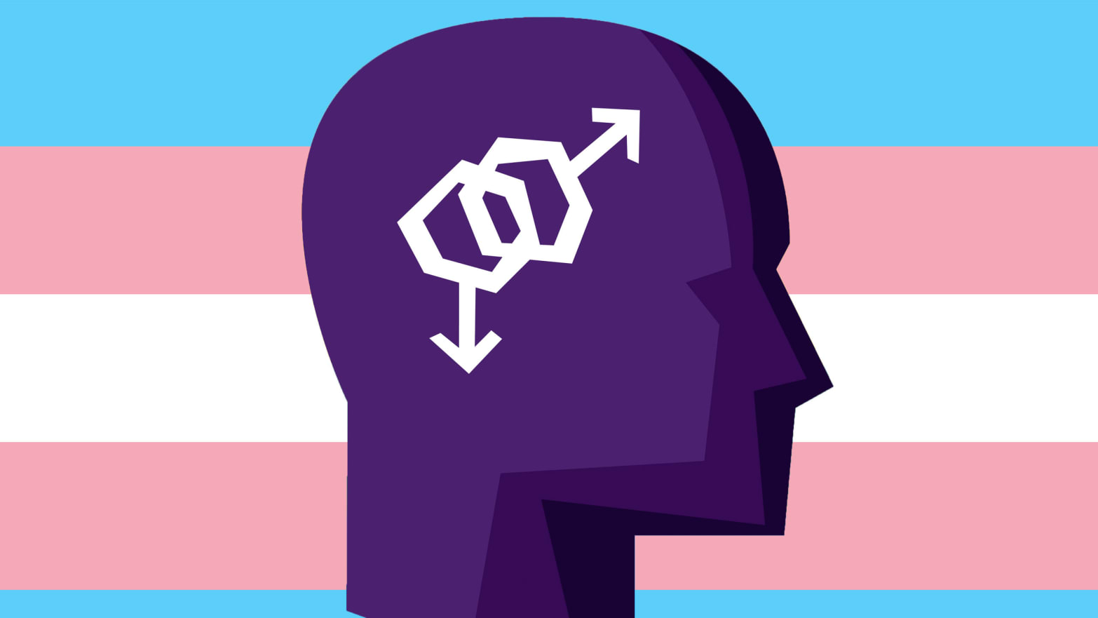 What gender dysphoria different transgender