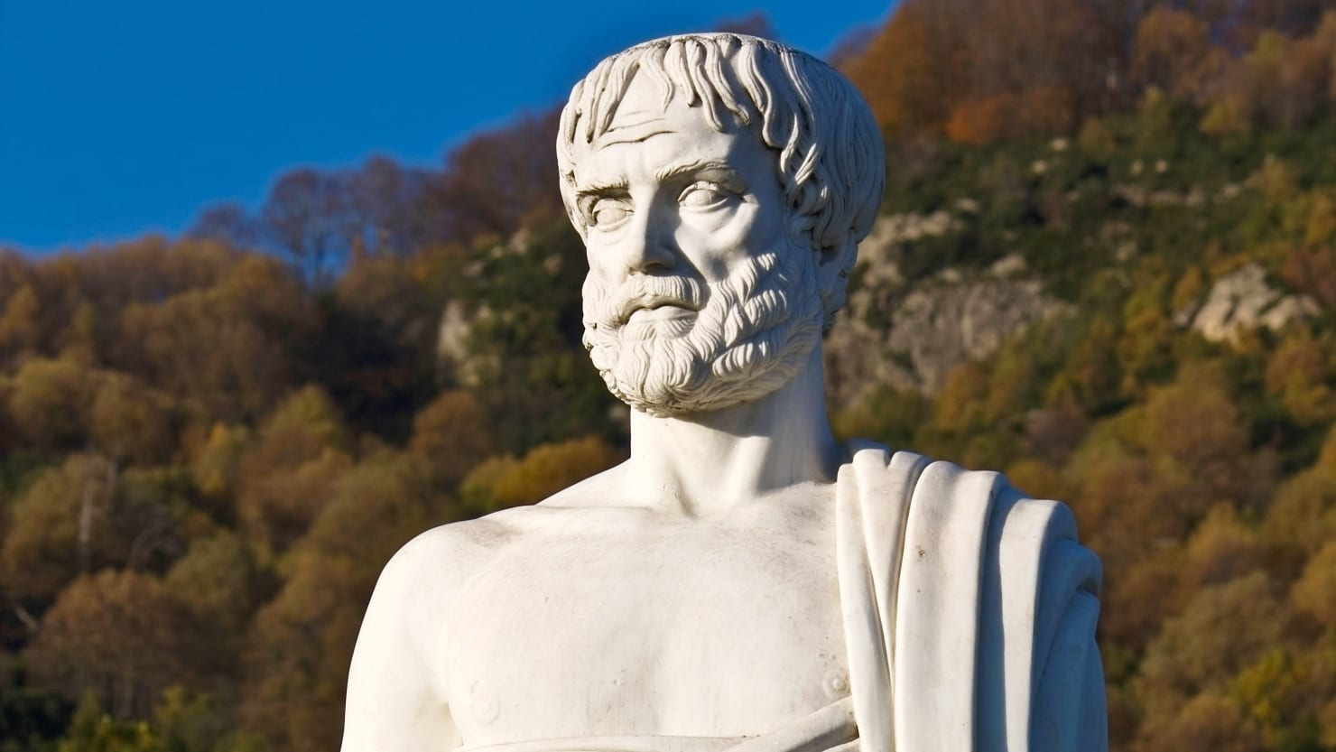 An essay on aristotles account of friendship
