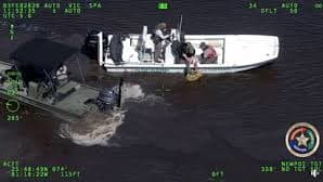 Kayaker Missing for 11 Days in Florida Everglades Found Thanks to His Lost Cellphone