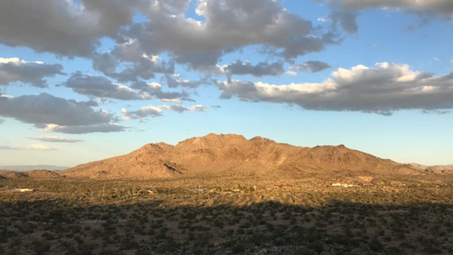 My Mojave Desert Lockdown: Coyotes, Sunrise Yoga, Bikers on Meth, and Kangaroo Rats