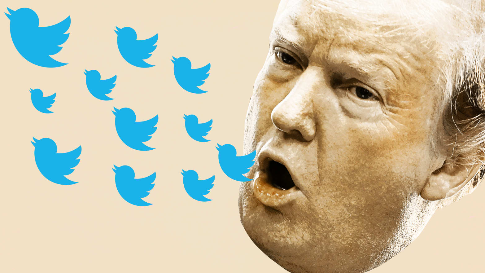 Twitter CEO Gently Tells Trump: Your 'Lost' Followers Are Bots and