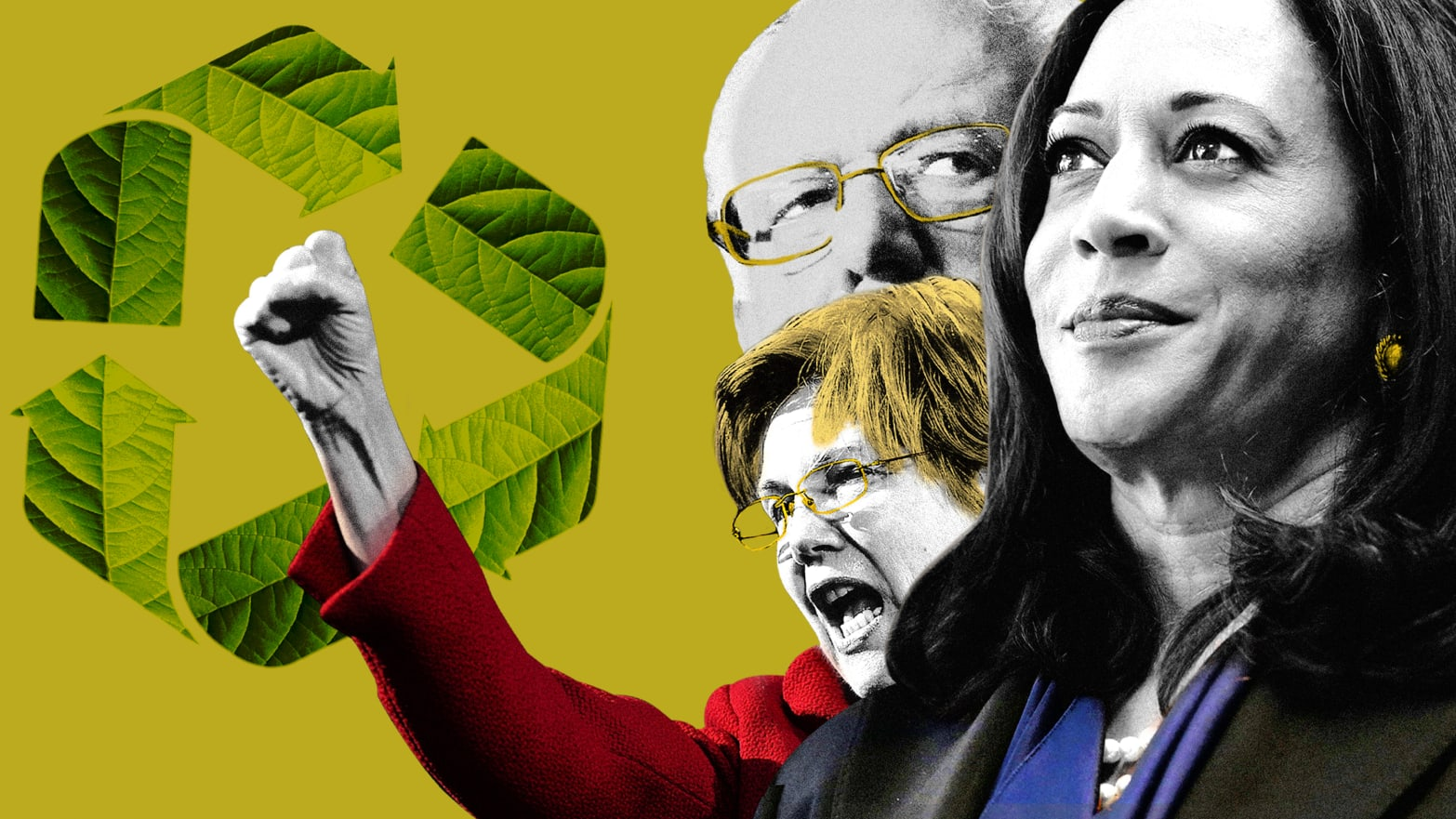 Bernie Sanders, Kamala Harris, Elizabeth Warren, and More: Who Are the Climate Change Candidates in the 2020 Race?