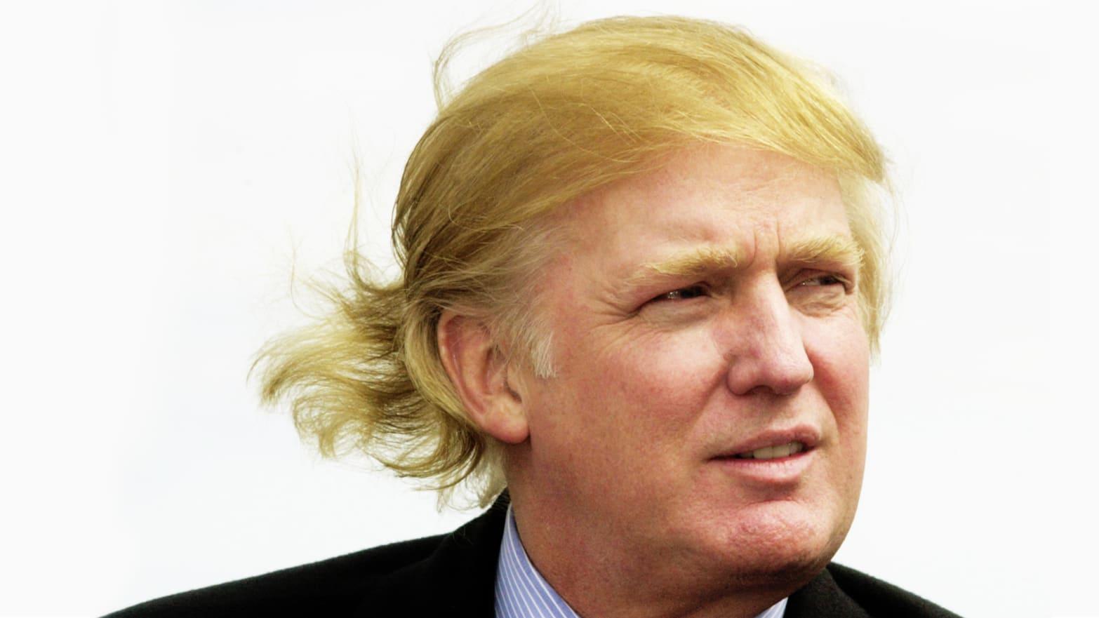 Trump's Tax Leak Hints at Potential Fraud Investigations