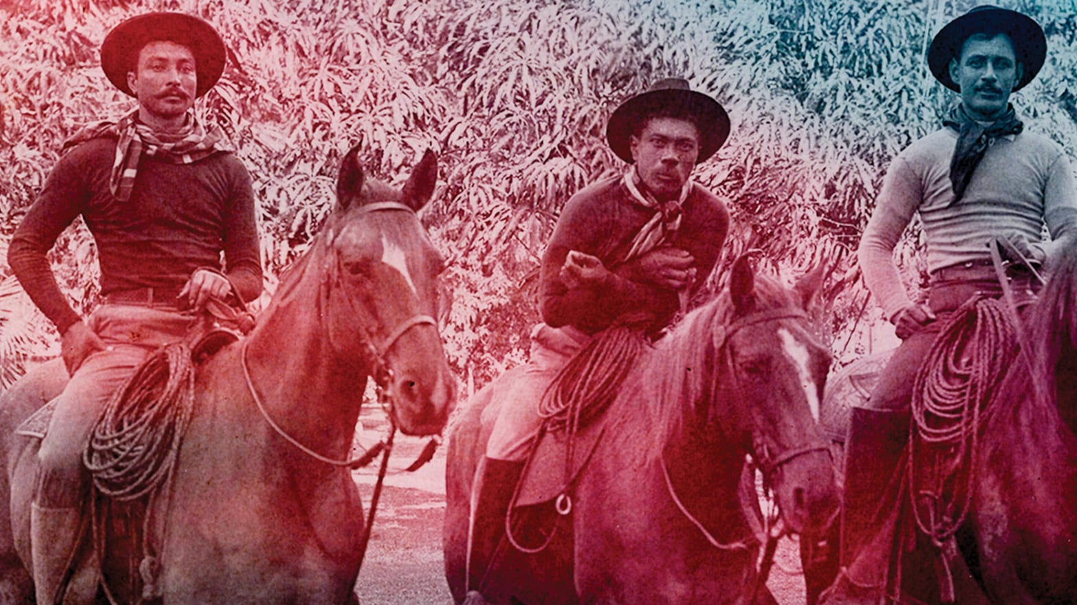 The Hawaiian Cowboys Who Rocked the Rodeo World