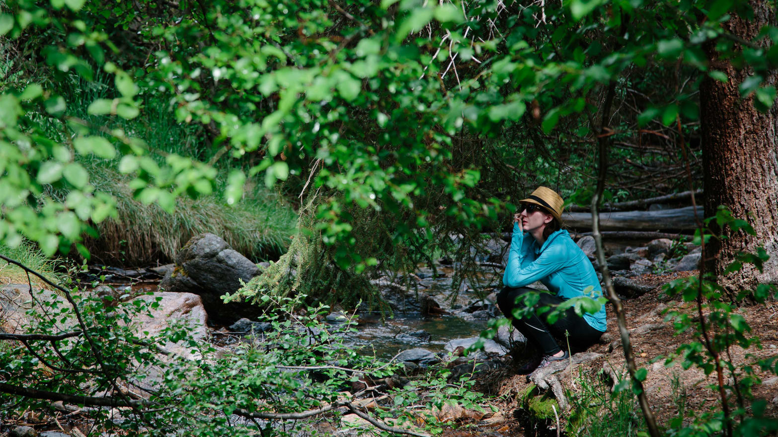 Forest Bathing: Forget Weed, This is Colorado's Hot Mind-Bending Trend