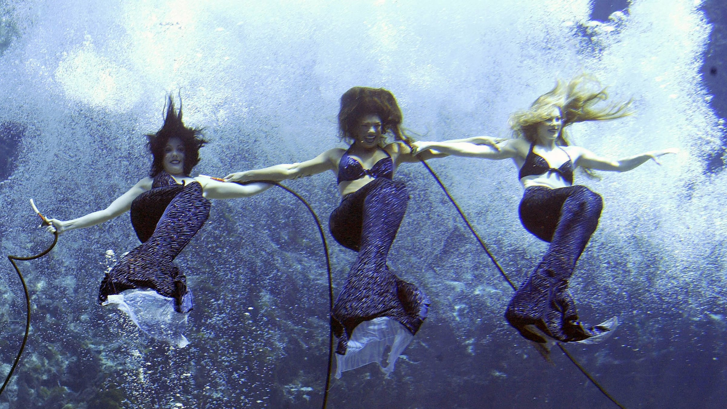 Weeki Wachee River: The Turquoise River That Brings You Right to Old Florida