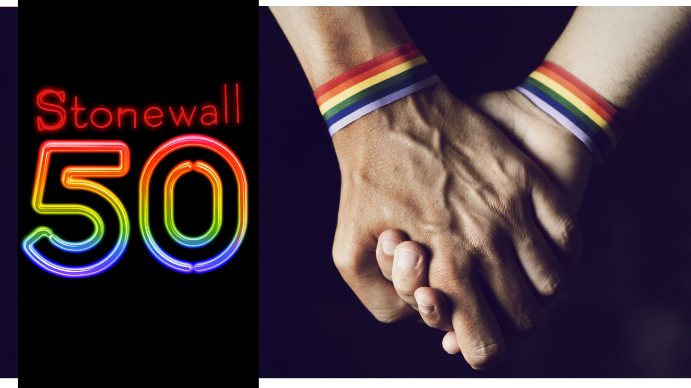 Image result for The Road to Stonewall 50
