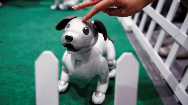 photo of aibo robot dog at sony corp's entertainment robot fan meeting in tokyo japan robopet robocat seal paro dog cat pet loneliness
