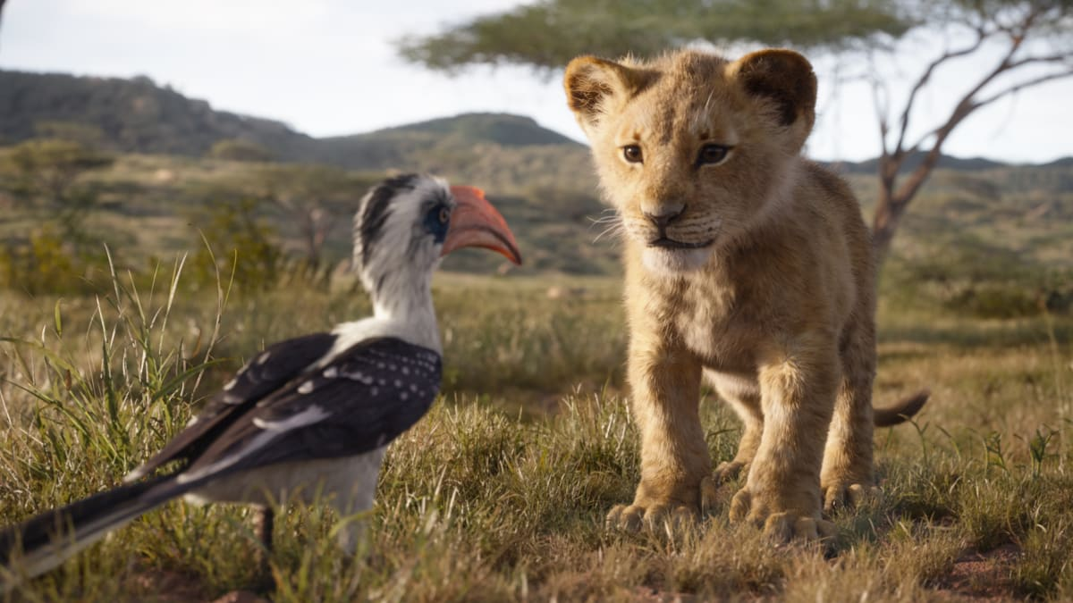 The Beyoncé-led 'Lion King' May Be the Most Beautiful Film I've Seen. Is That Enough?
