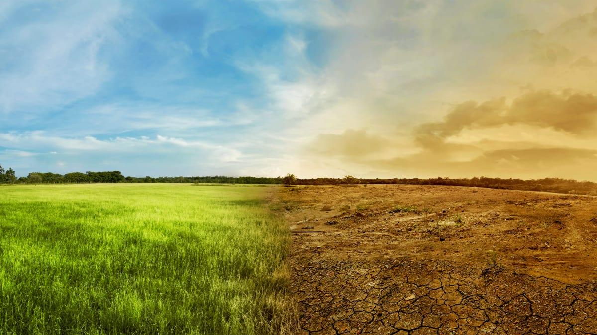 Could Restoring Soil Help Halt Climate Change?