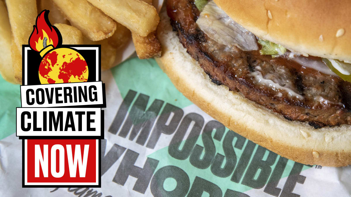 Just How Good Is the Burger King's Impossible Burger for You or the Planet?