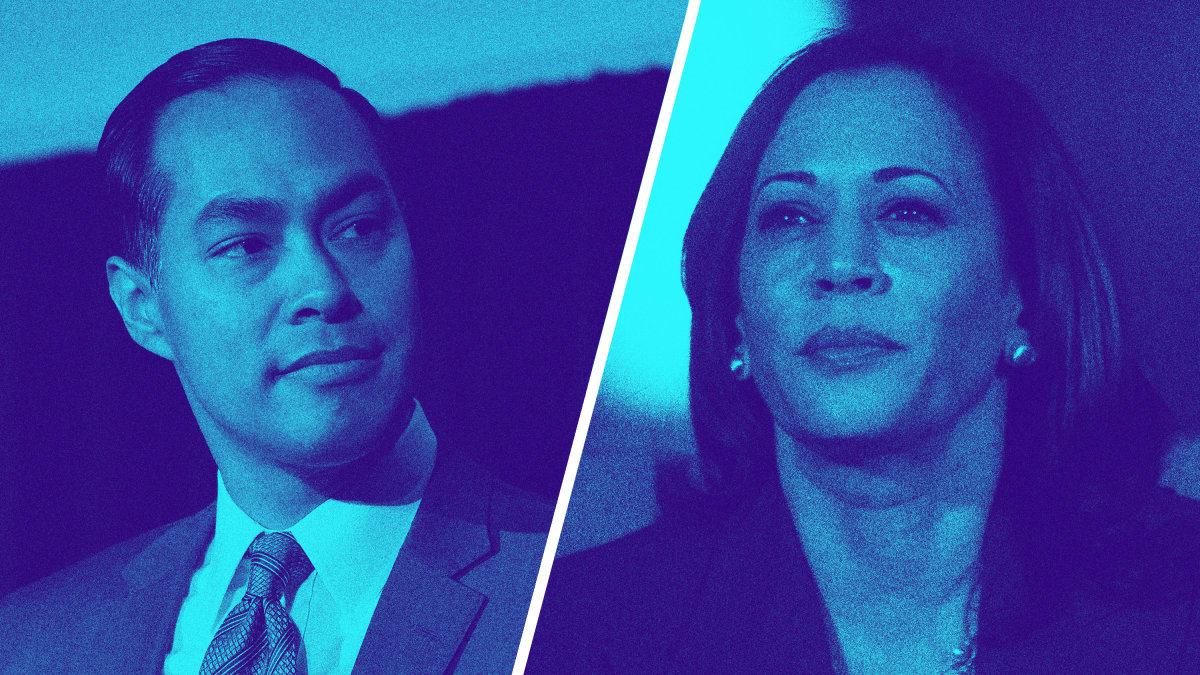 The Democrats' 'Most Diverse Field in History' Is as White as Ever at the Top