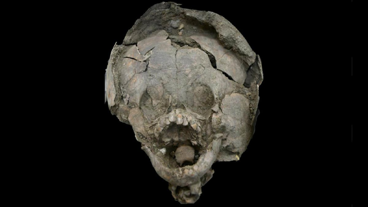 The Mysterious Case of Babies Buried With Helmets of Other Children's Skulls