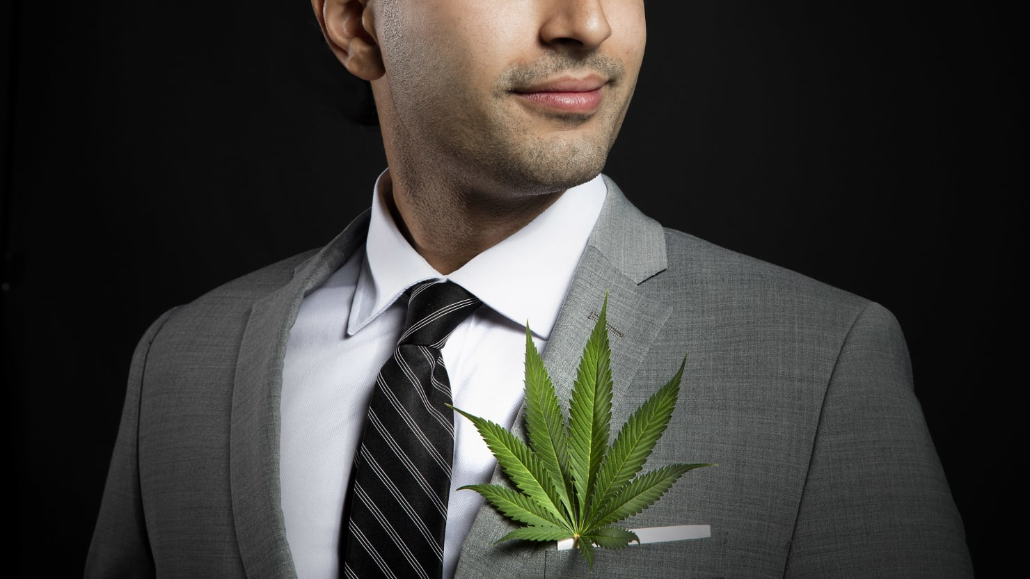 image of man in a suit with a marijuana leaf in his pocket 420 pot weed cannabis gender gap sex roles parity men women male female