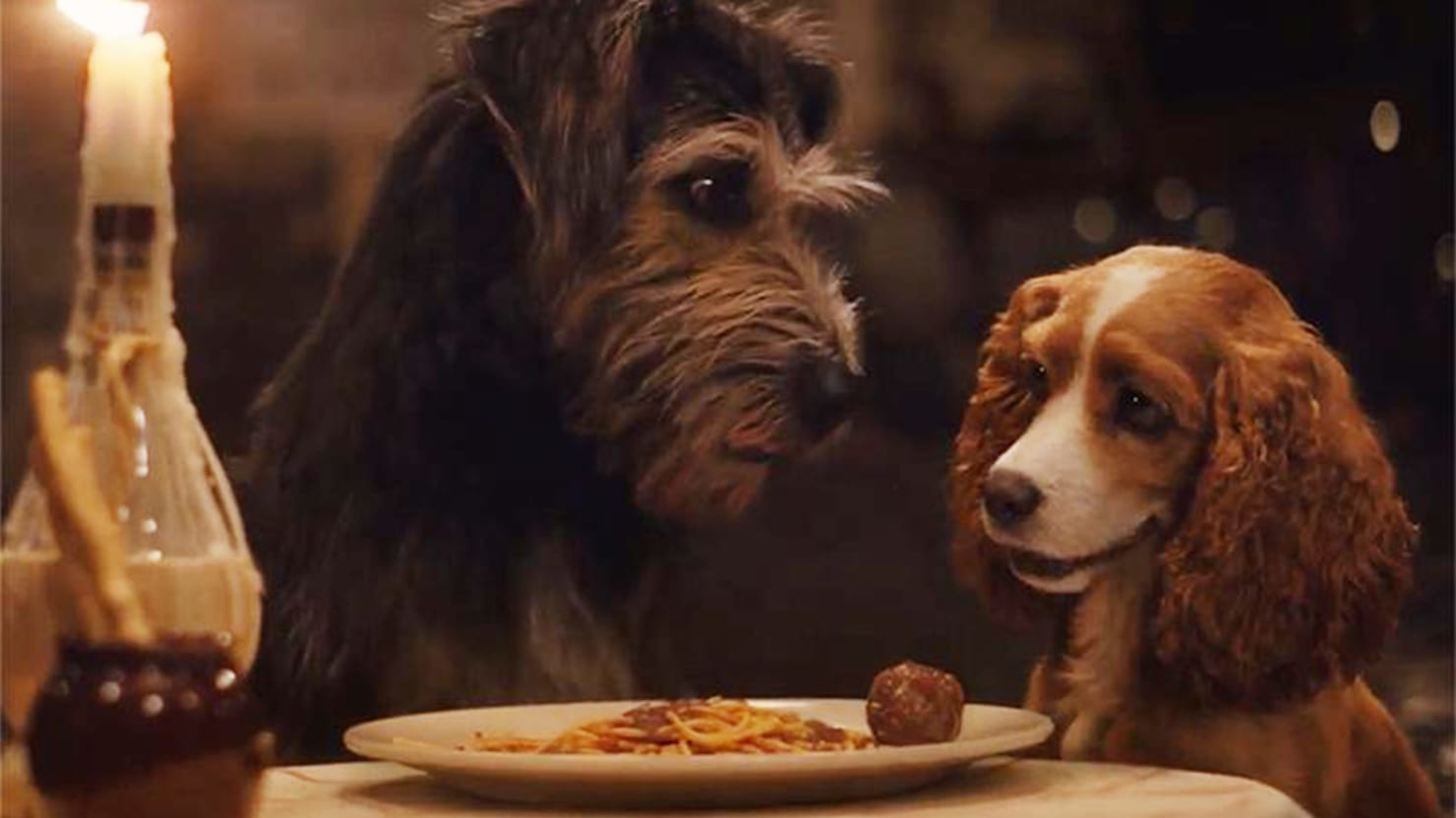 Disney Plus New Lady And The Tramp Remake Is As Weird As It Is Adorable