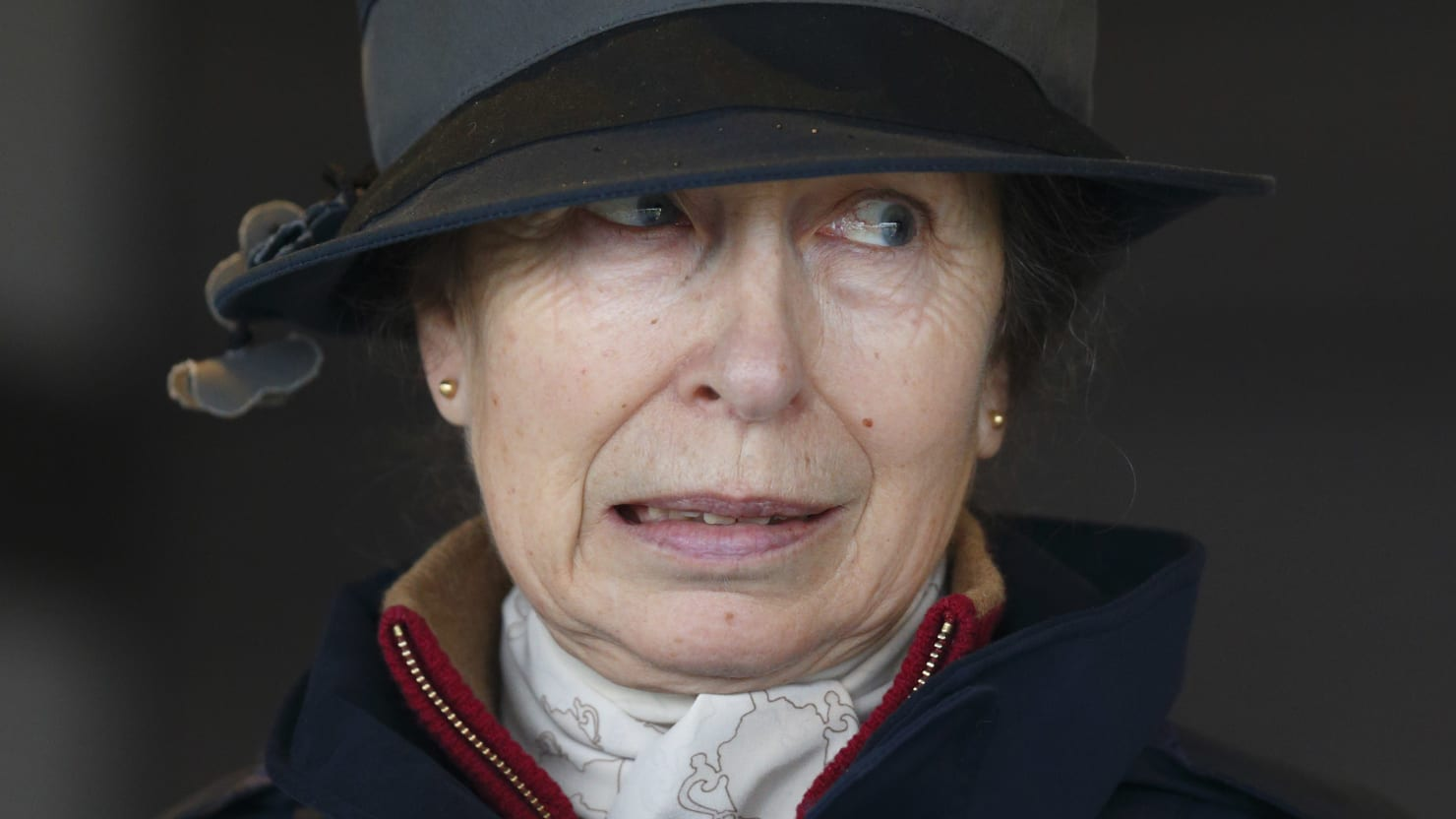 Princess Anne May Not Have Dissed Trump. She's Still a Royal ...