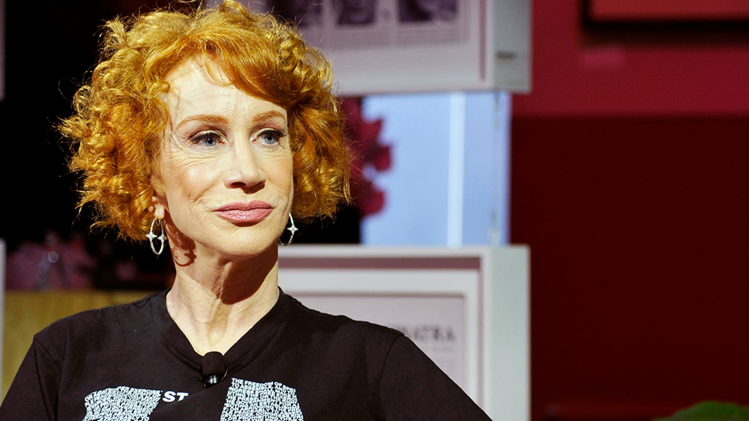 Kathy Griffin Speaks Out on Legal Nightmare: 'I'm Not a Terrorist'