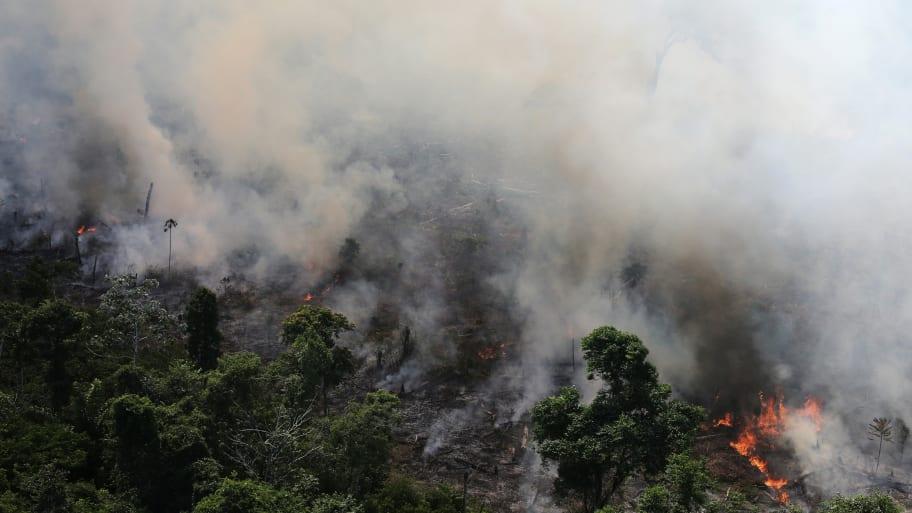 Brazilian President Jair Bolsonaro Claims NGO Set Amazon Rainforest on Fire