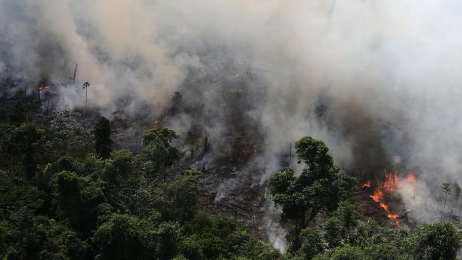 Record Number of Wildfires Burning in Amazon Rainforest: Brazilian Space Agency