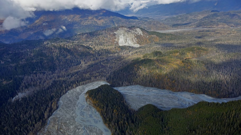 Trump Moves to Allow Logging in Alaska's Tongass National Forest: Report