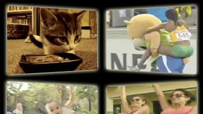 25 Summer Viral Video Hits