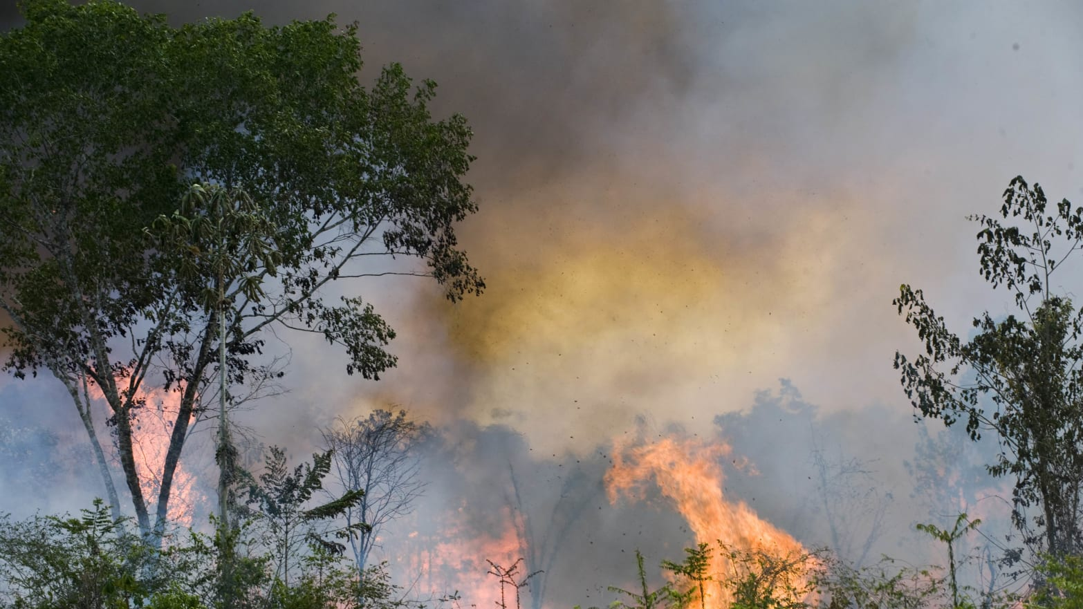 Brazil Military Mobilizes to Fight Amazon Fires Amid Global Backlash