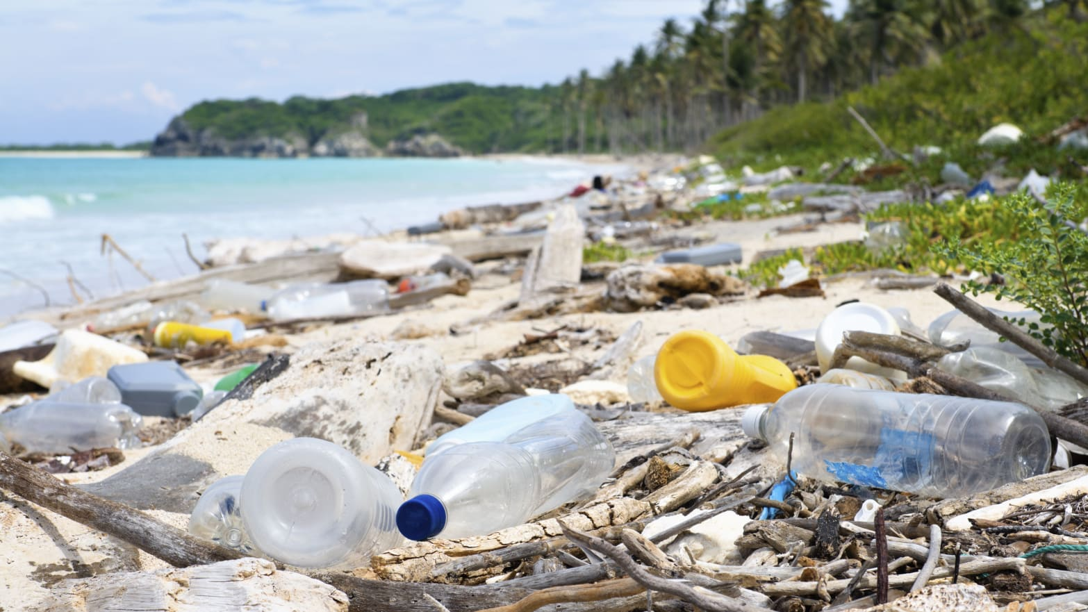 Why Recyclable Single-Use Water Bottles + Other Plastics Are A Plague on Our Planet