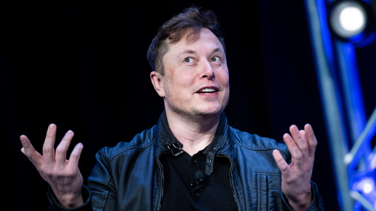 Elon Musk Reportedly Implants Pig Brains Successfully With New Tech, Plans for Humans Next