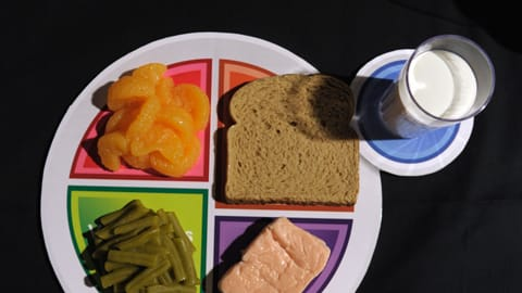 Food Pyramid Replaced By Myplate Padma Lakshmi And Others