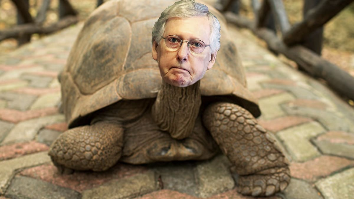 Kentuckians Have Finally Had About Enough of Mitch McConnell