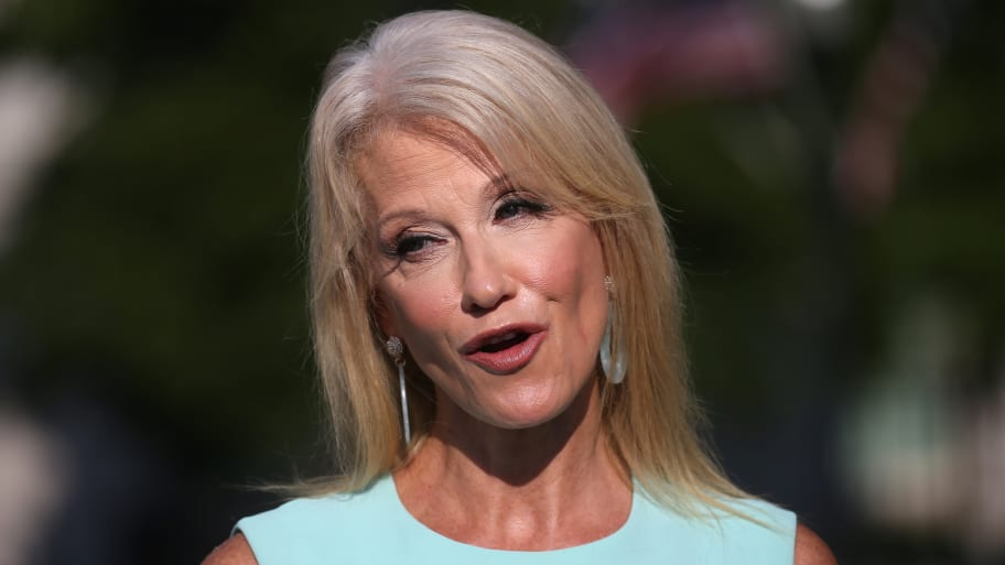 Kellyanne Conway: Mike Pence 'Will Be on the Ticket, Promise'